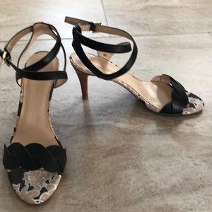 Cute Black strapped heels